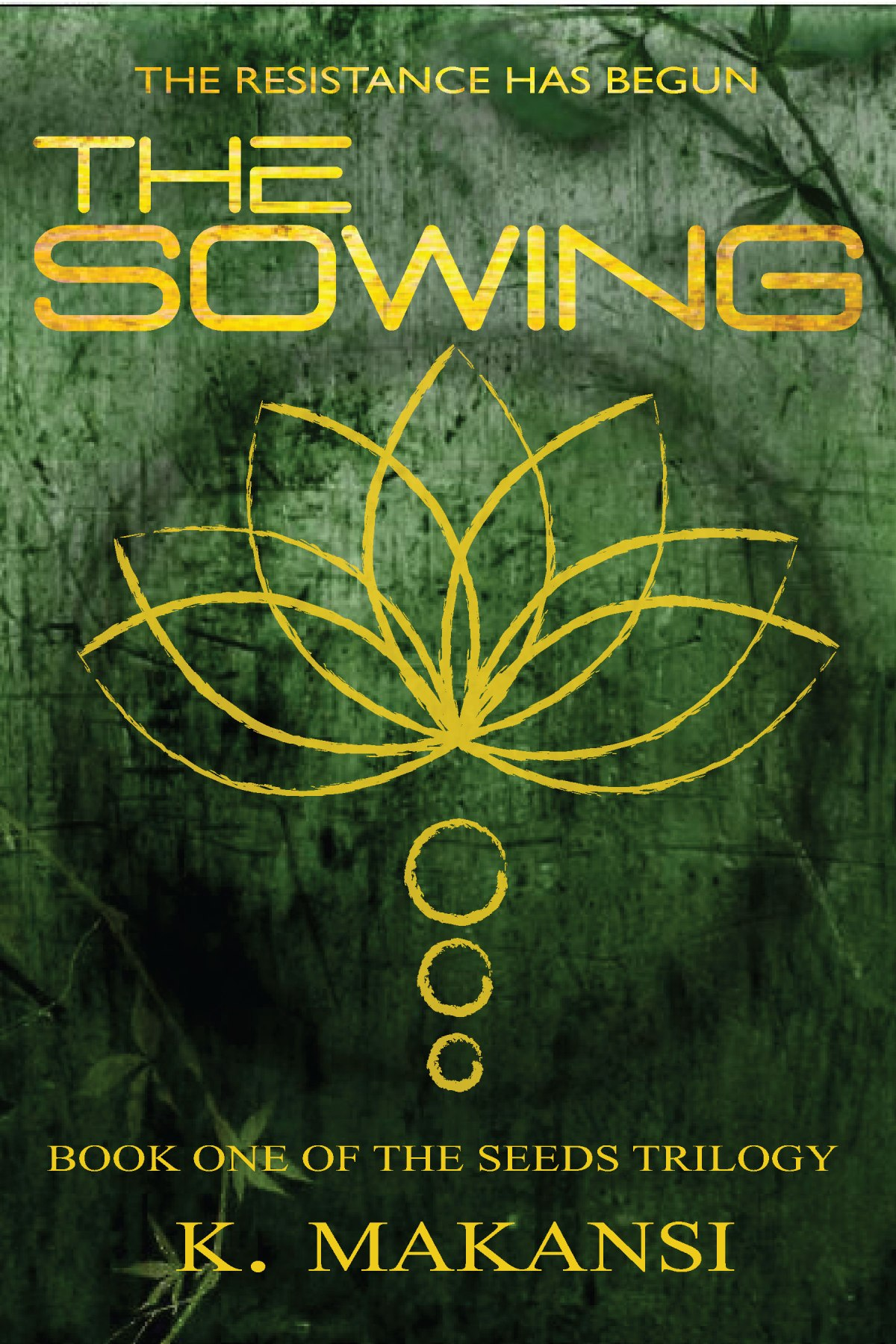 Q&A with Amira Makansi of THE SOWING. How a dream became a novel.@AKMakansi