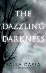 the_dazzling_darkness.jpg