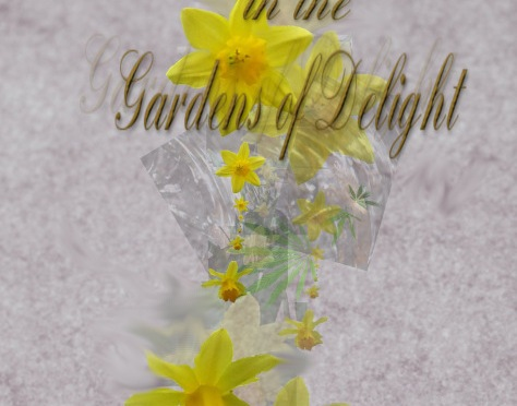 Echoes of Narcissus in the Gardens of Delight by @JoRobinson176