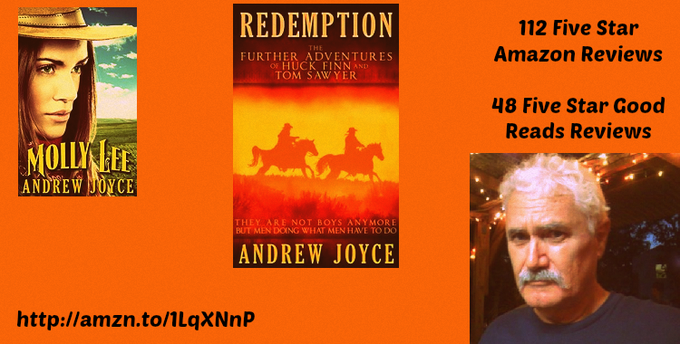 A @COLLEENCHESEBRO INTERVIEW WITH AUTHOR ANDREW JOYCE@HUCKFINN76