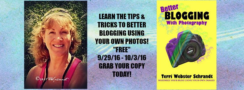 "#BOOK REVIEW BY @COLLEENCHESEBRO OF ""Better Blogging with Photography: How to Maximize Your Blog Using Your Own Images,"" BY AUTHOR @windigenredhead"