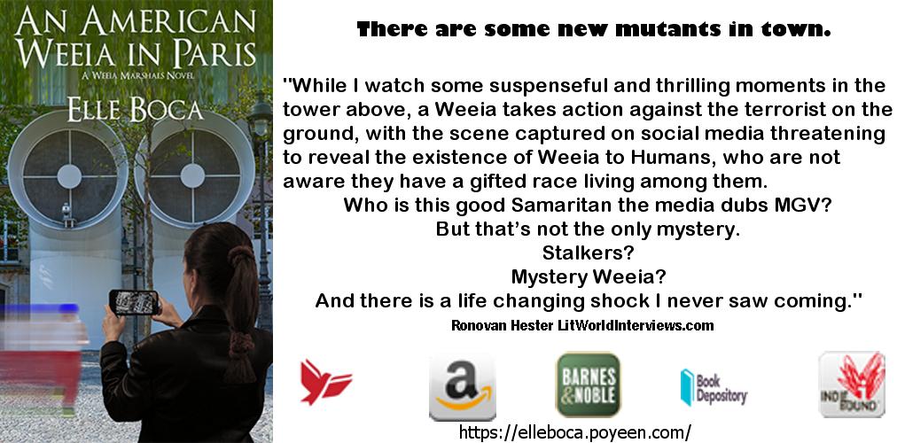#BookReview by @RonovanWrites of @ElleBoca's An American Weeia inParis.